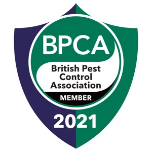About Pestek Pest Control
